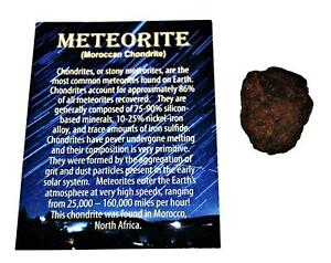 MOROCCAN Chondrite Stony METEORITE - ONE - Size (L) 11 to 20 grams