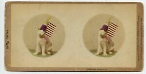 Cat  & American Flag Vintage Patriotic Stereoview Photo by J.Soule , Boston 1871