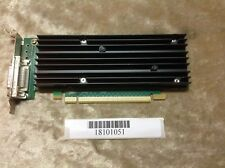 Nvidia Quadro NVS 290-256MB DDR2 SDRAM  graphics Video Card