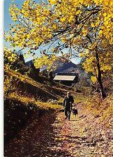 BR50392 Montagnes depart pour la chasse un matin d automne france       France