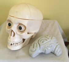 life size plastic human skull with removable brain & working jaw