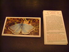 Grandee British Butterflies Full Set By John Player & Sons