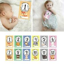 12 Sheet Milestone Photo Sharing Cards Newborn Baby Age Cards Photography Props