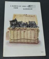 Old Postcard - Cats In Hamper - Good Luck From London - With Views - 1925.