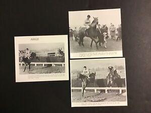 ARKLE 3 LOT photo Horse Racing CHAMPION
