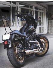 Sissybar für Harley Davidson® DYNA Mod ab 2009 , SB FB WG Edelstahl Schwarz Matt