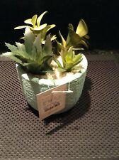 Mini Artificial Succulent Plant in Clay Pot Aqua Green with Four Plants