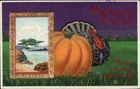 Thanksgiving Turkey & Pumpkin Nice Gold Finish c1910 Postcard rpx