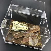 Acrylic Reptile Terrarium Habitat Ideal Case for Larvae Spiders Ants Scorpi R5Z4
