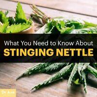 Nettle Leaf Capsules 100% Organic Stinging Leaf Dr Sebi MADE FRESH