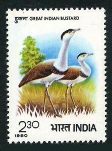 India 879,MNH.Michel 844. Symposium Bustards,1980.Great Indian Bustard.