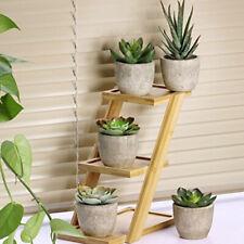 5pcs/set Simulation Succulent Artificial Cactus Cacti Plants with Gray Pots