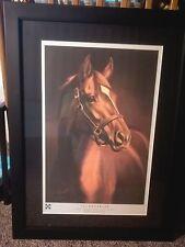 """Secretariat Print """"Memories of Greatness"""" Autographed Psa/Dna certified"""