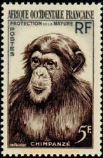 EBS French West Africa 1955 Chimpanzee (Pan troglodytes) FR-WA 51 MNH**