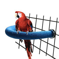 Parrot Pet U Shape Bar Stand Perch Grinding Claw Toy Bird Supply Cage Decor NEW