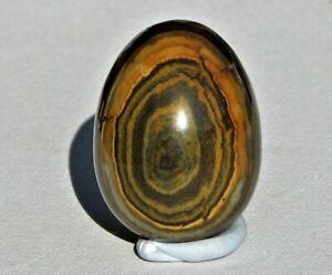 Natural Tiger Eye Tigereye Carved Egg (TEGG1)