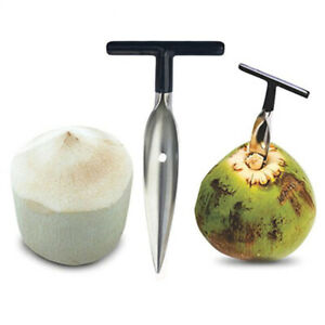 1Pcs Stainless Steel Coconut Opener for Fresh Green Coconut Water Open Tools