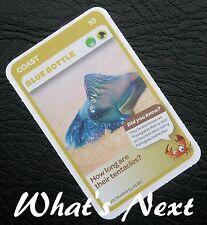 Woolworths   AUSSIE ANIMALS   Card 10/108 COAST Blue Bottle (Free Post)