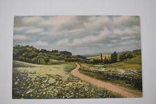 Postcard Artist Signed Art P.Hommel Flowering Meadows S.27 Unposted