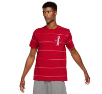 Nike Mens  Short Sleeve Moisture Wicking T-Shirt RED USA STRIPED TRAINING TEE