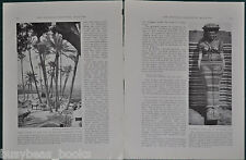 1919 MEDICINE FAKES AND FAKERS magazine article, some things never change