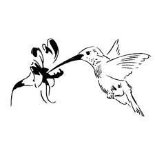 HUMMINGBIRD Unmounted bird rubber stamp, summer, Sweet Grass Stamps #9