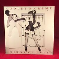 GODLEY & CREME Birds Of Prey 1983 UK PROMO vinyl LP + INNER Excellent Condition