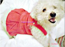"""Paw Appeal Corduroy Cutie Skirt Bib Suspenders Pink #:420607  LG 20""""New Pkg"""