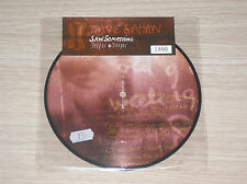 "DAVE GAHAN (DEPECHE MODE) - SAW SOMETHING - 45 GIRI 7"" PICTURE DISC LIMITED ED."