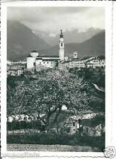 ve 215 1942 BELLUNO Panorama - viagg - Foto Burloni Belluno