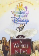 A Wrinkle in Time (DVD,2004)