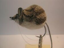 Deerhair Fly (Large Mouse)