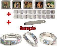 Lion Wild Animal 18mm Mega Stainless Steel Italian Charms Bracelet + Tool HG69