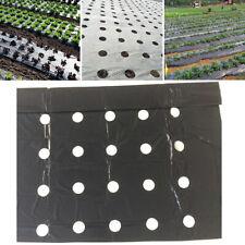 Polyethylene Greenhouse Film Black  Plastic Greenhouse Cover Garden Supplies
