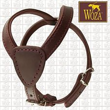 WOZA Premium Brustgeschirr Vollleder Ledergeschirr Rindnappa Lederhalsband Y2989