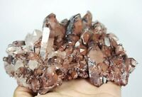 "AAA Rare NATURAL Red Ghost ""pyramid"" Quartz Crystal Cluster Specimen"