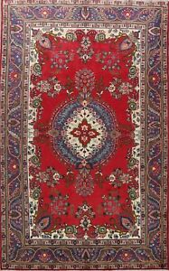 Vintage Traditional Floral RED/ NAVY Wool Area Rug Hand-Knotted Oriental 7x10