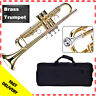 TRUMPET - NEW BRASS BAND TRUMPETS w/CASE.WARRANTY+APPROVED