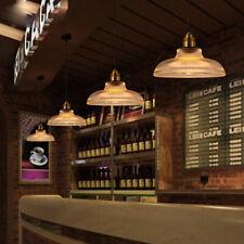 Vintage Retro Antique Industrial Pendant Ceiling Light Lamp Shade Cafe Bar  US