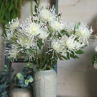 Leucospermum Artificial Plastic Flowers Fake Chrysanthemum Wedding Home Decor Dp