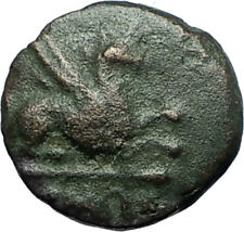 ABDERA THRACE Genuine 345BC Authentic Ancient Greek Coin GRIFFIN & APOLLO i68350