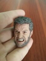 "1/6 Scale Wolverine Head Carving Model Angry Expression Fit 12"" Male Figure Toys"