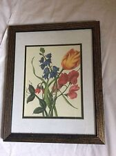 Mexican Mexico Crystal Art Gallery Tulip wall decor print wood framed