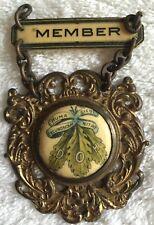 """Vintage Sons of Hermann member pin metal enamel beautiful German 2 x 3"""" old"""
