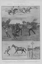 1902 Antique Print - LONDON BARNET Horse Cattle Fair Races Welsh Ponies (95)
