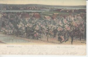 Ansichtskarte Brandenburg Werder a.d. Havel Blick von der Bismarck Höhe