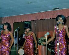 """Diana Ross and the Supremes 10"""" x 8"""" Photograph no 338"""