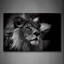 Black And White Gray Lion Head Portrait Wall Art Painting Pictures Print On The
