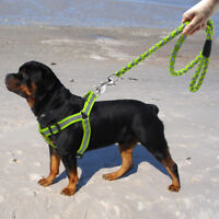 Step-in Dog Harness Walking Leash Set No Pullig Reflective Nylon Dog Vest Leads