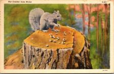 Postcard  Nut Cracker From Maine